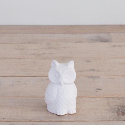 LED Light Owl