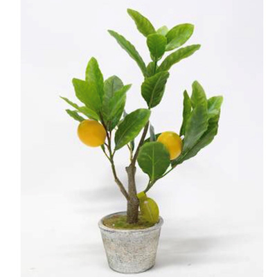Lemon Tree Potted 40cm