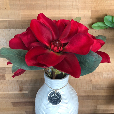Magnolia Red with Green Stem 71cm
