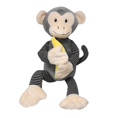 Mateo the Spider Monkey