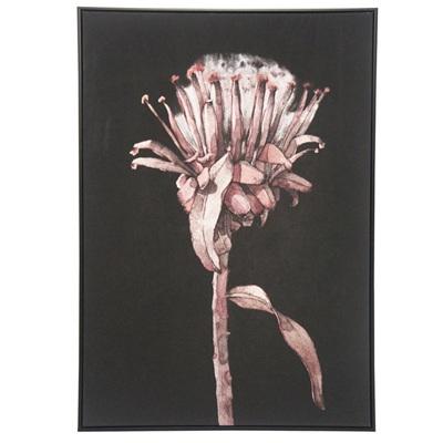 Natavia Canvas Print - Black Frame 80x120cm