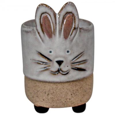 Nibbles Egg Cup