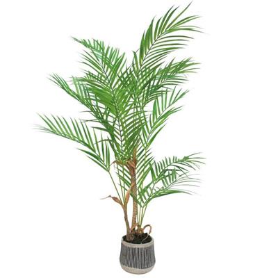 Palm W/ Black & White Pot - 90cmh