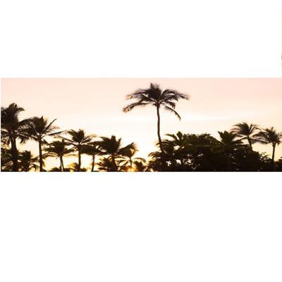 Pink Palms Sunset - 50x150cm