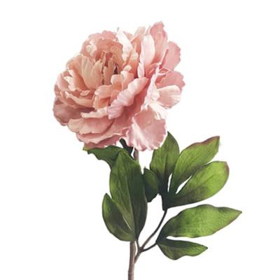 Pink Peony 66cm
