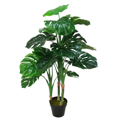 Potted Monstera 100cm