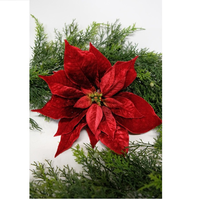 Red Velvet Poinsettia on Clip