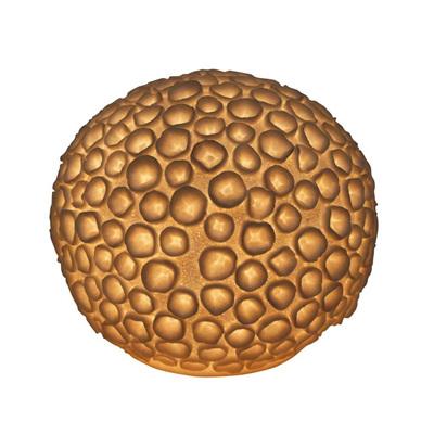 Resin Urchin Lamp - 33.5cm