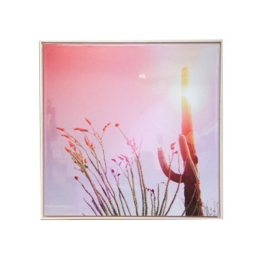 Rose Cactus Framed Gloss Canvas