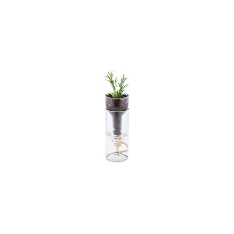 Self-Watering Bottle Planter