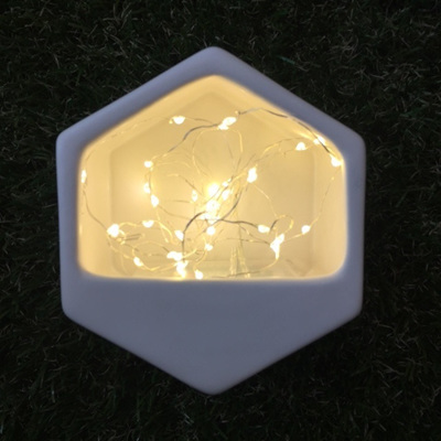 Silver Wire Seed Lights - Warm White 2m