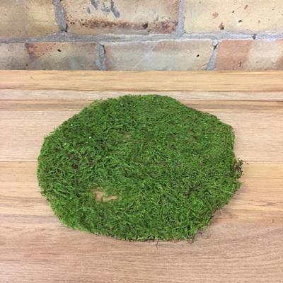 Spanish Moss Green