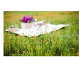 SPRINGTIME FLOWER PROPOSAL IDEAS