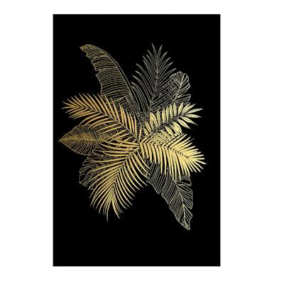 Starlight Canvas/Multimedia