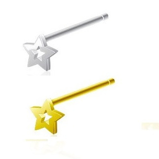 Sterling Silver Hollow Star Nose Stud 20g