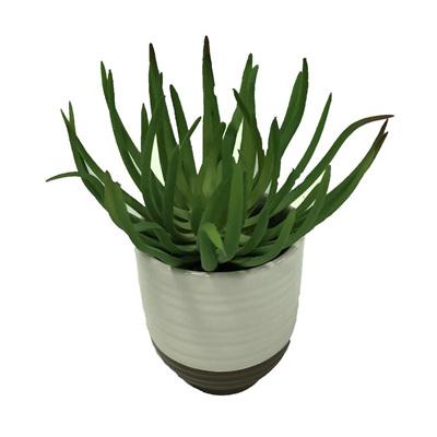 Succulent White/Cement Pot H19x9cm