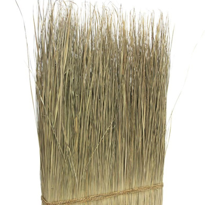 Sunny Large Grass Decoration - Natural - 53x100cmh