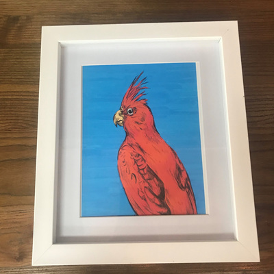 The Cockatiel Framed Print A4
