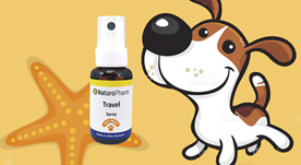 The Naturo Pharm Pet-Med Range  The Naturo Pharm Pet-Med Range  consists of a sm