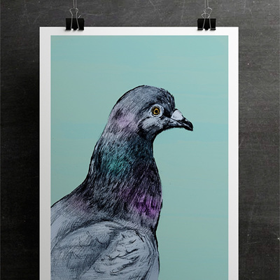 The Pigeon #1 Print - A4