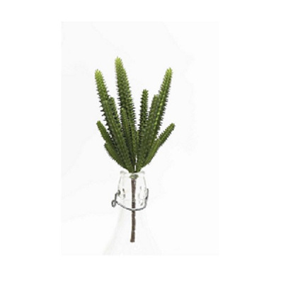 Watch Chain Cactus - 23 cm