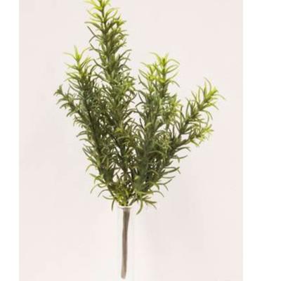 Wild Rosemary Pick