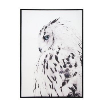 Wise Owl Framed Canvas