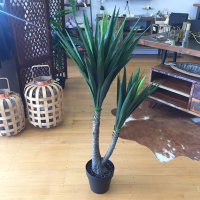 Yucca Potted 120cm