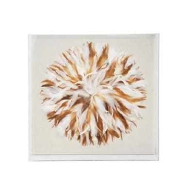 Zara Framed Art - Multi Feather - 60x60cm